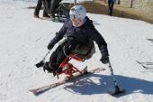 2-mono-ski